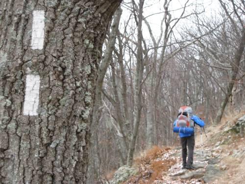 Jason Stevenson of Lancaster hikes the Appalachian Trail in Shenandoah National Park, Va.